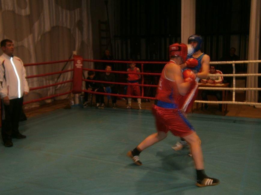 Димитровские и Красноармейские спортсмены завоевали 7 золотых медалей на Областном турнире по боксу (фото) - фото 5