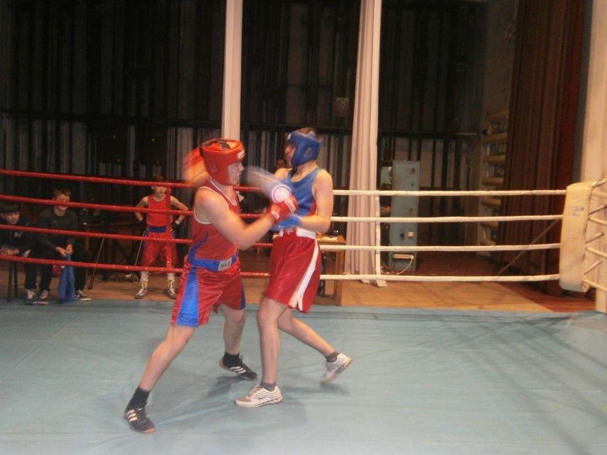 Димитровские и Красноармейские спортсмены завоевали 7 золотых медалей на Областном турнире по боксу (фото) - фото 13