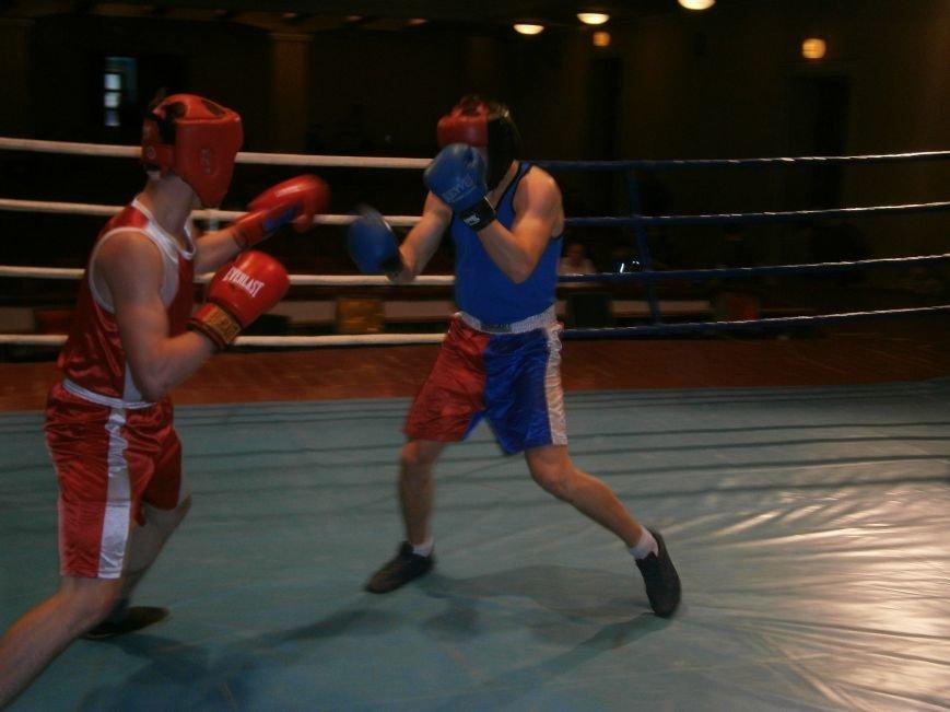 Димитровские и Красноармейские спортсмены завоевали 7 золотых медалей на Областном турнире по боксу (фото) - фото 19