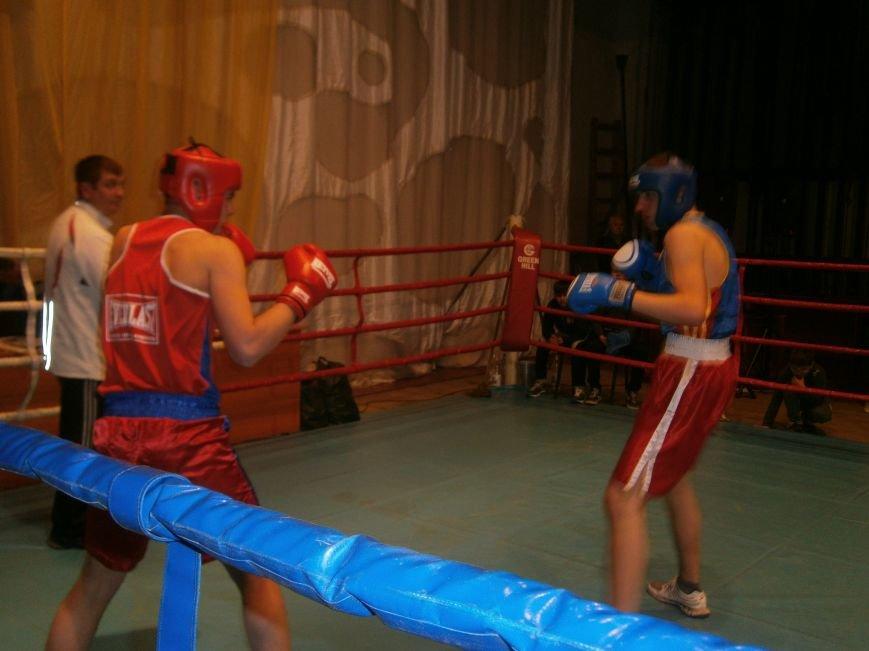 Димитровские и Красноармейские спортсмены завоевали 7 золотых медалей на Областном турнире по боксу (фото) - фото 4