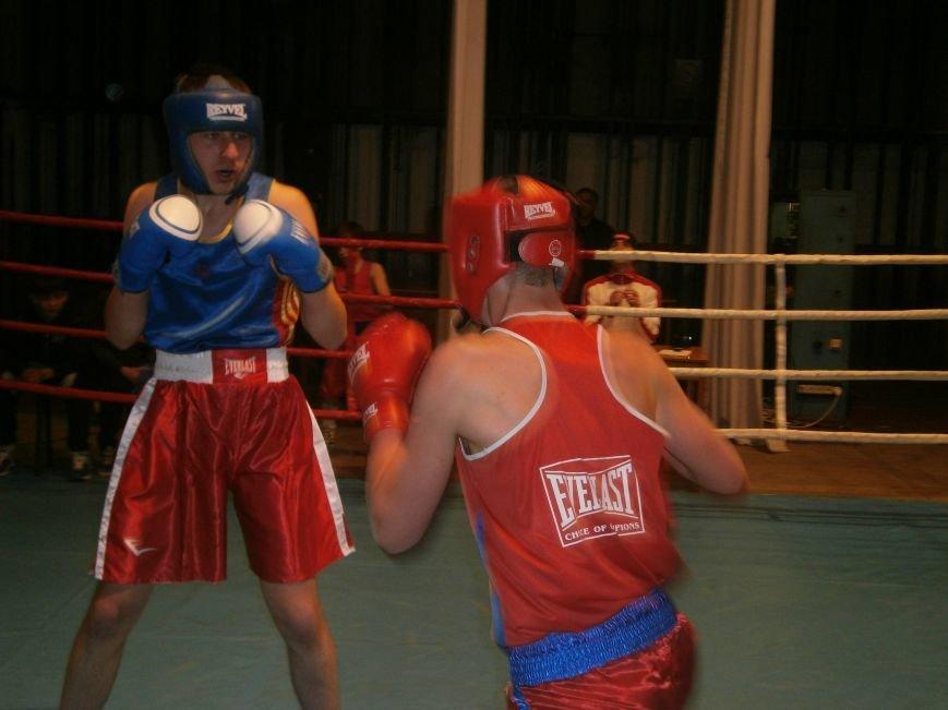 Димитровские и Красноармейские спортсмены завоевали 7 золотых медалей на Областном турнире по боксу (фото) - фото 9