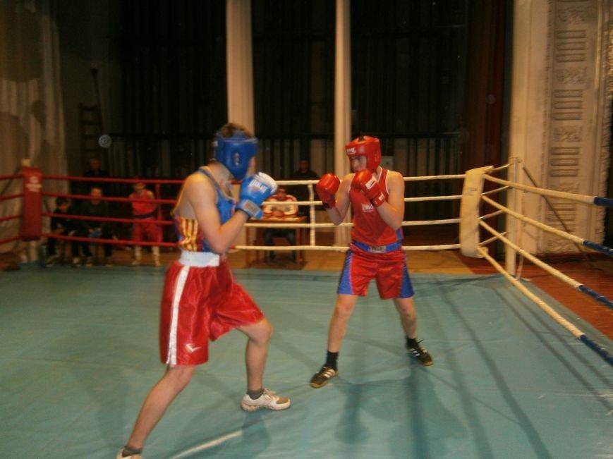 Димитровские и Красноармейские спортсмены завоевали 7 золотых медалей на Областном турнире по боксу (фото) - фото 2