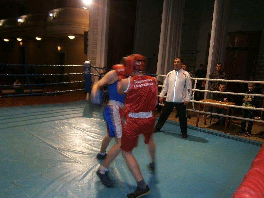 Димитровские и Красноармейские спортсмены завоевали 7 золотых медалей на Областном турнире по боксу (фото) - фото 18