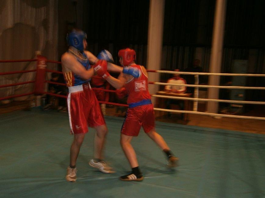 Димитровские и Красноармейские спортсмены завоевали 7 золотых медалей на Областном турнире по боксу (фото) - фото 6