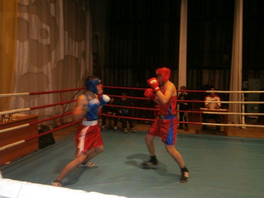 Димитровские и Красноармейские спортсмены завоевали 7 золотых медалей на Областном турнире по боксу (фото) - фото 11
