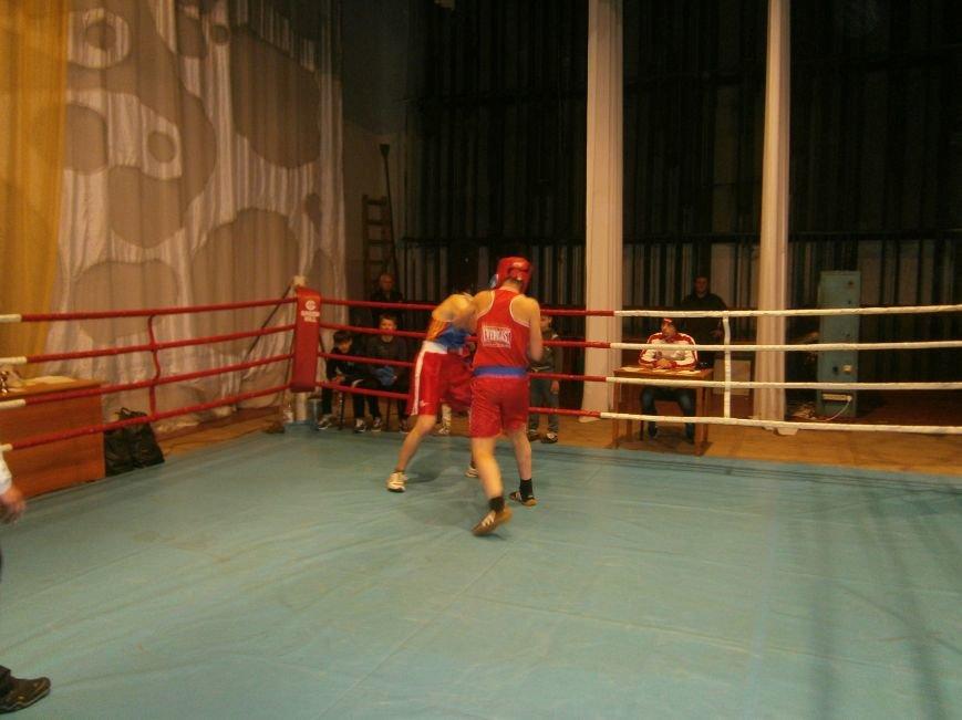 Димитровские и Красноармейские спортсмены завоевали 7 золотых медалей на Областном турнире по боксу (фото) - фото 3