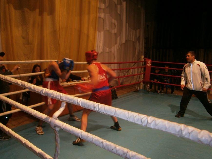 Димитровские и Красноармейские спортсмены завоевали 7 золотых медалей на Областном турнире по боксу (фото) - фото 8