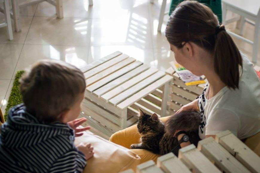 Переселенці з Криму створюють унікальні заклади на теренах Львова (фото) - фото 1