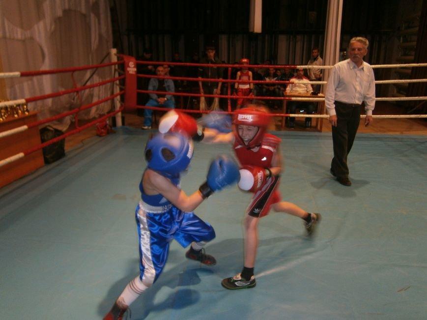 В Димитрове завершился Областной турнир по боксу, посвященный Дню Победы (ФОТО+ВИДЕО) (фото) - фото 9