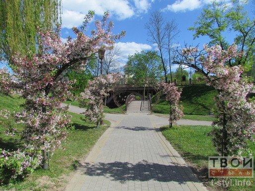 Фотофакт: в Гродно появилась арка Любви (фото) - фото 3