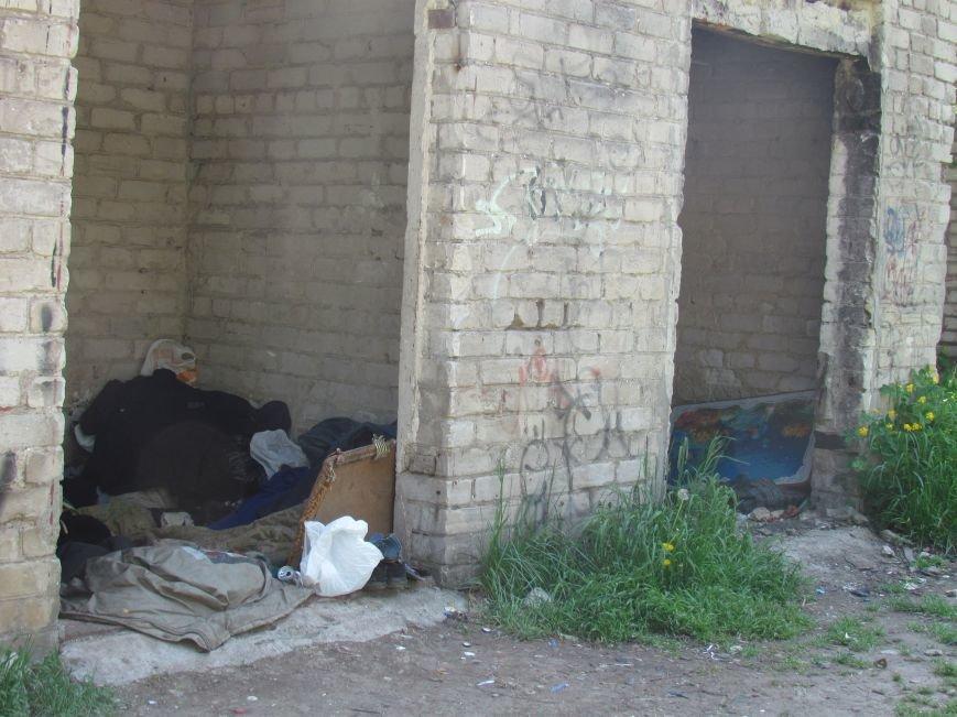 Мариупольцам мешают соседи-бомжи (ФОТО), фото-2