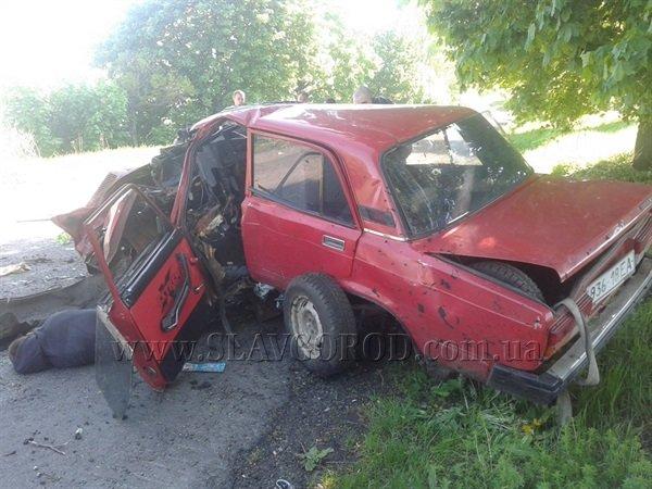 Трагическая смерть: водитель «семерки» погиб от столкновения с деревом, фото-1
