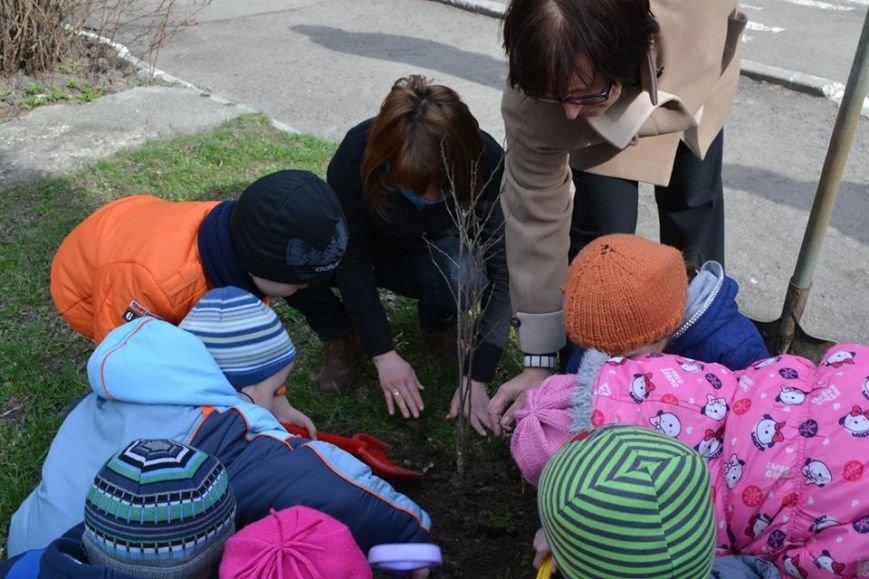 Іванофранківці активно взялись озеленювати рідне місто (ФОТО), фото-2
