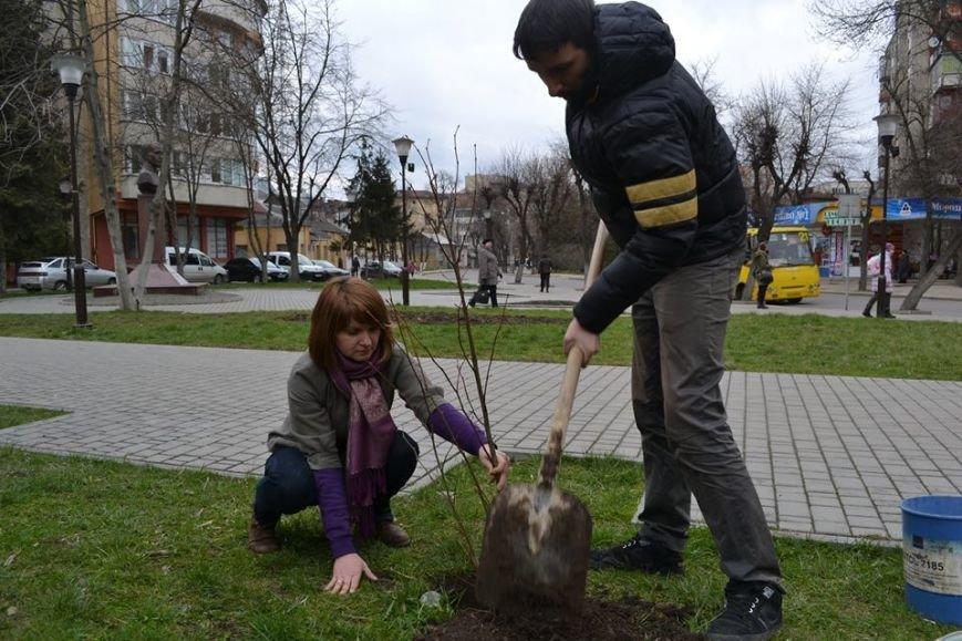 Іванофранківці активно взялись озеленювати рідне місто (ФОТО), фото-3