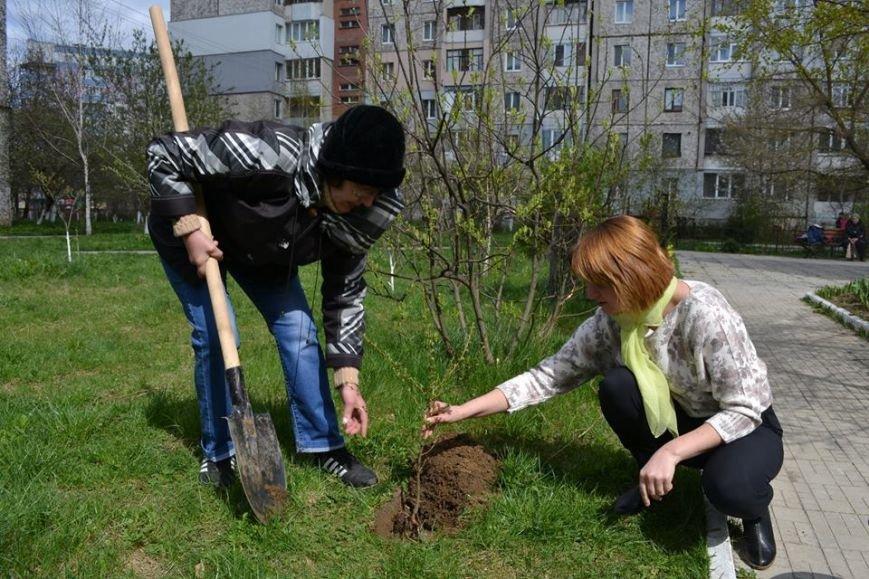 Іванофранківці активно взялись озеленювати рідне місто (ФОТО), фото-4