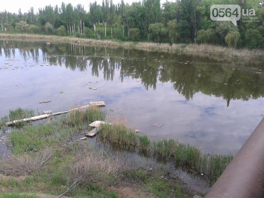 В Кривом Роге: в реку сбросили листы стекловаты, гаишники поймали автоугонщика, в город вернулись 400 бойцов (фото) - фото 1
