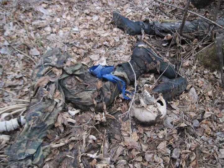 В заповеднике «Меловая флора» на Донетчине до сих пор находят неразорвавшиеся снаряды и останки тел (ФОТО+18), фото-1