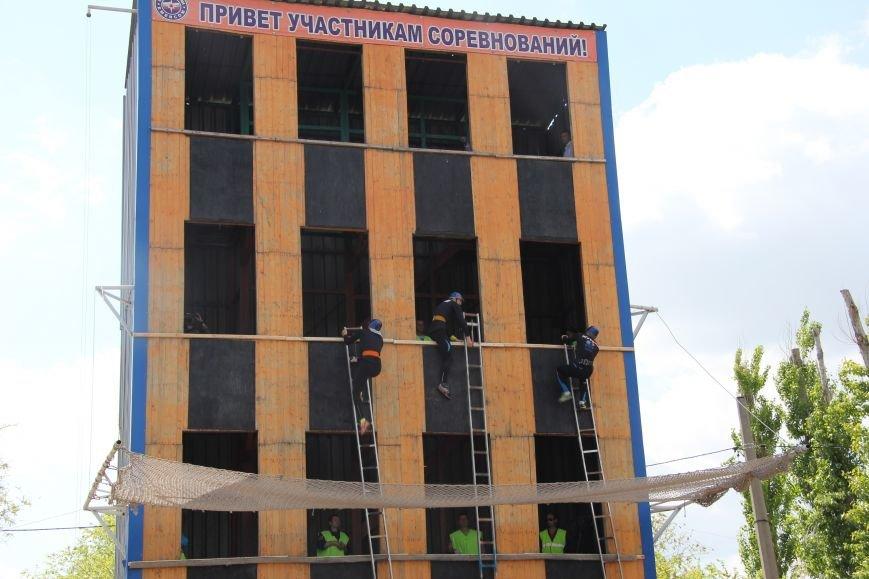Команда спасателей из Германии борется в Волгограде за «Кубок Победы» (фото) - фото 4
