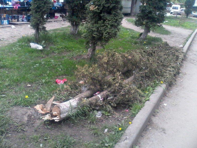 У Тернополі встановлюють торговій павільйони на газоні (фото) (фото) - фото 1