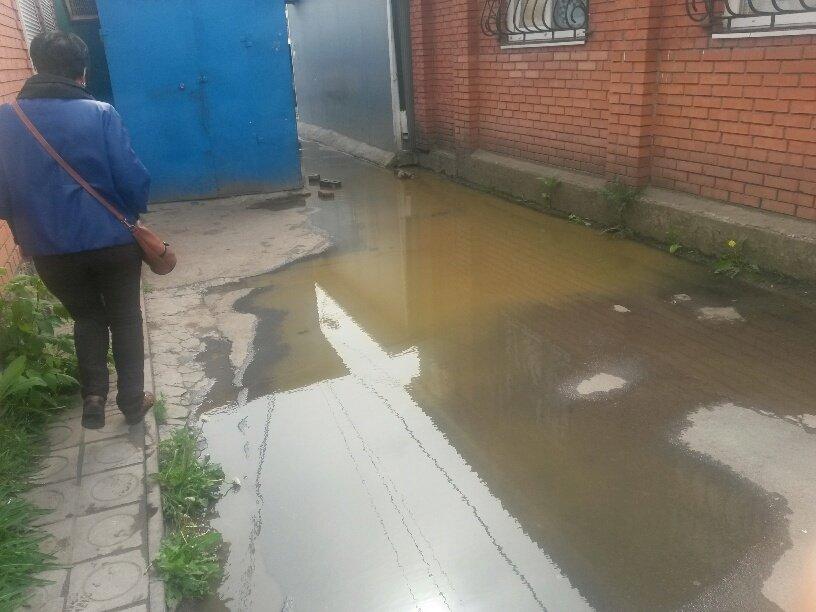 В Мариуполе фекалии затопили овощной рынок (ФОТО), фото-3