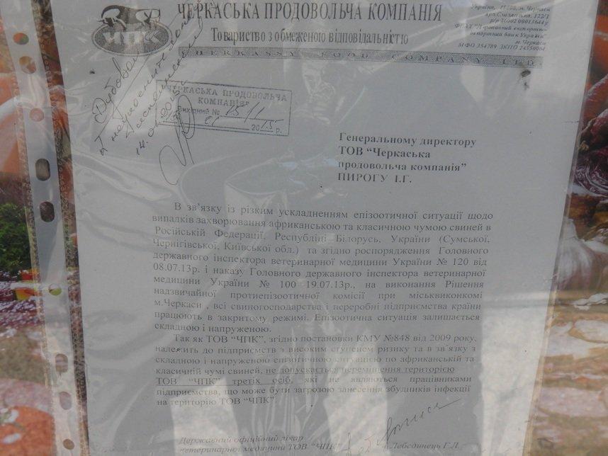 Африканська чума свиней завадила процедурі банкрутства черкаського підприємства (ФОТО) (фото) - фото 1