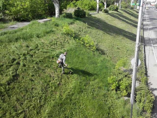 В Макеевке косят! Городские власти занялись покосом карантинных растений и сорняков (фото) - фото 2