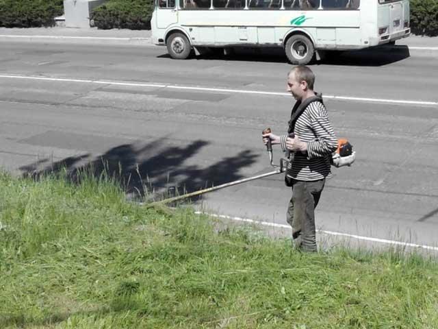 В Макеевке косят! Городские власти занялись покосом карантинных растений и сорняков (фото) - фото 1
