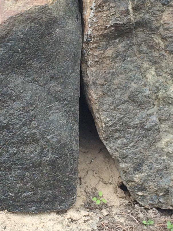 Мини квест от ВЗАПЕРТИ стартует (фото) - фото 3