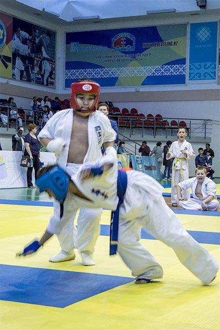 Прошел Открытый чемпионат области по шинкиокушенкай карате, фото-4