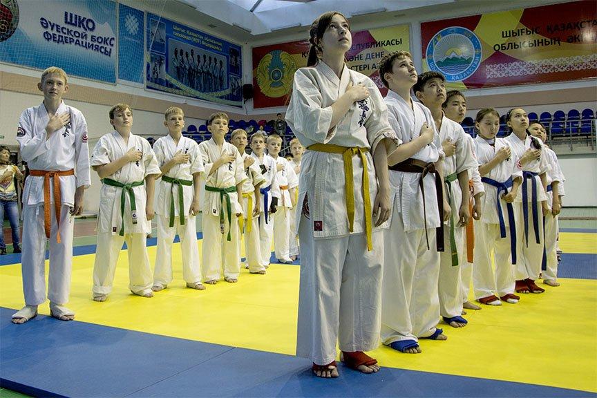 Прошел Открытый чемпионат области по шинкиокушенкай карате, фото-7
