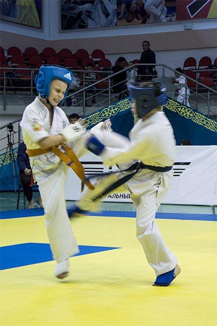 Прошел Открытый чемпионат области по шинкиокушенкай карате, фото-8