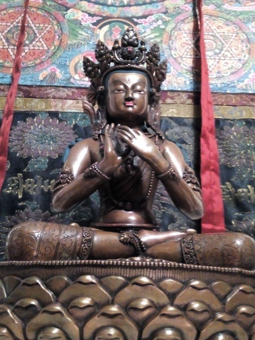 Волгоградцам удалось побывать в Буддийском центре (фото) - фото 2