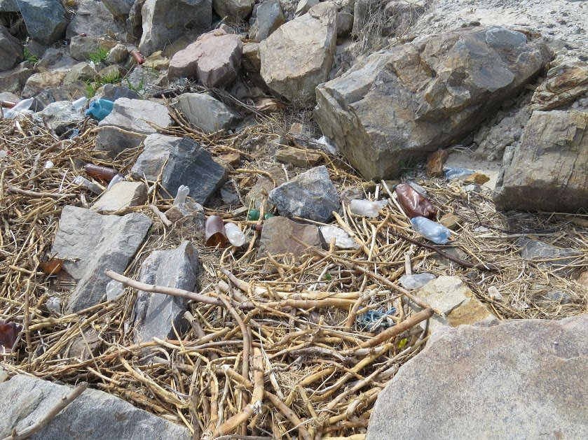 Молодежь Мариуполя убрала территорию пляжа (ФОТО), фото-1