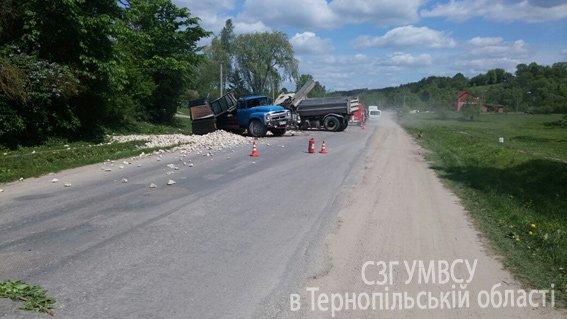 Смертельна ДТП: на Тернопільщині зіткнулися вантажні автомобілі (фото) (фото) - фото 1