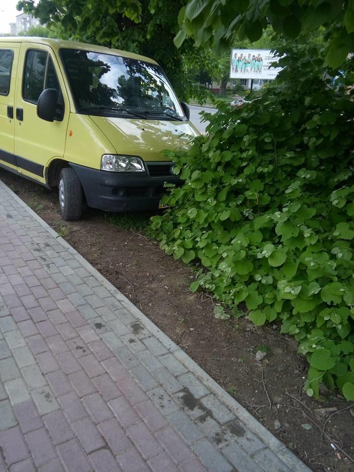 У Тернополі водії нищать нову пішохідну доріжку (фото) (фото) - фото 1