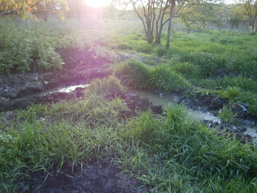 Кто остановит канализационный потоп в Димитрове? (фото) - фото 1