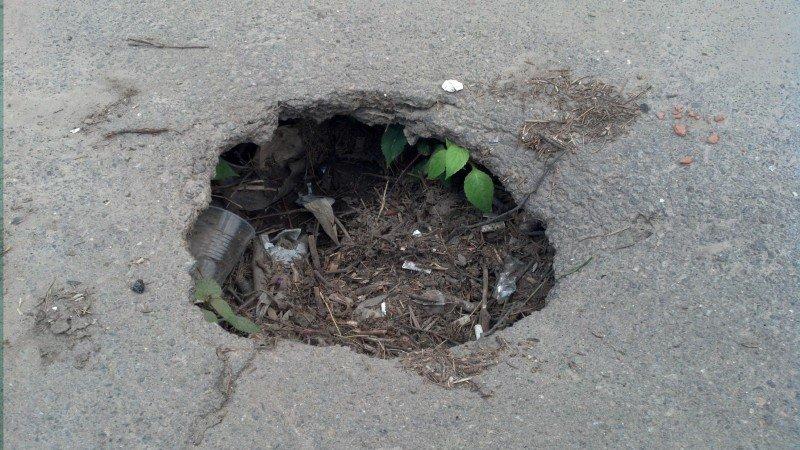 У Тернополі біля Ставу утворюється яма, яку закидають сміттям (фото) (фото) - фото 1
