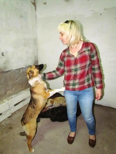 Кинолог полка «Азов» вывезла из Широкино 5 собак (ФОТО), фото-5