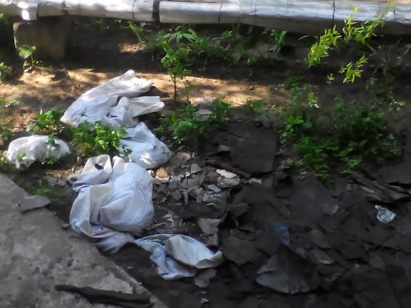 Мариупольцы жалуются на намусоривших сотрудников ЖЕКа (ФОТО) (фото) - фото 1