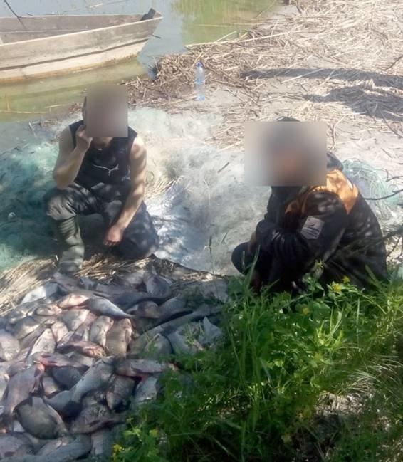 За сутки кременчугские водные милиционеры изъяли более 50 кг добытой браконьерами рыбы (ФОТО) (фото) - фото 1