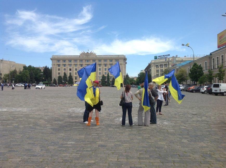 Харьковские активисты не дали провести на площади Свободы митинг сторонникам «антимайдана» (ФОТО), фото-3