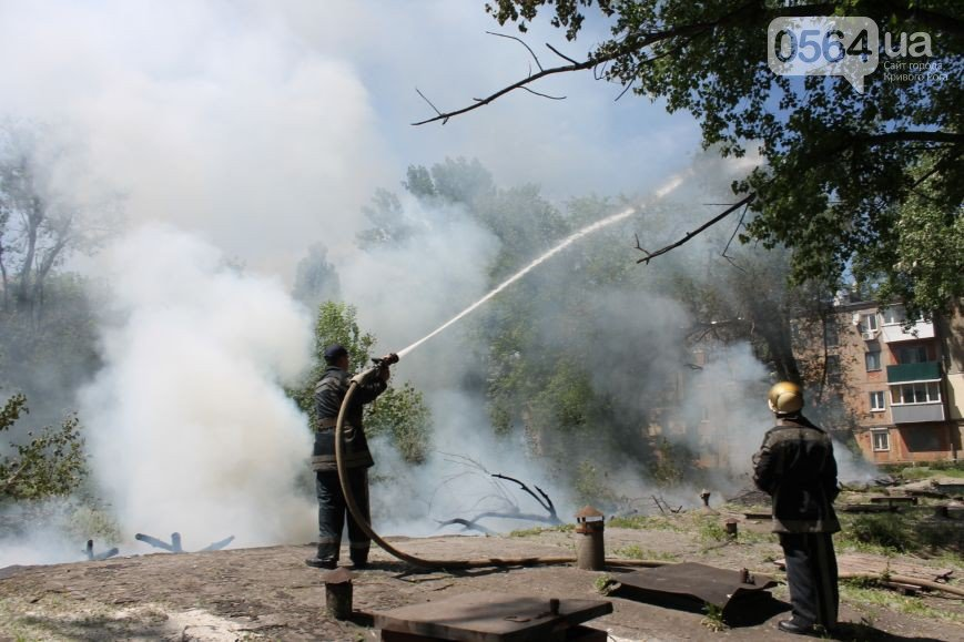 В Кривом Роге: из горящей квартиры спасли пенсионерку, неизвестные поджигали тополиный пух, дети посвятили картину городу (фото) - фото 2