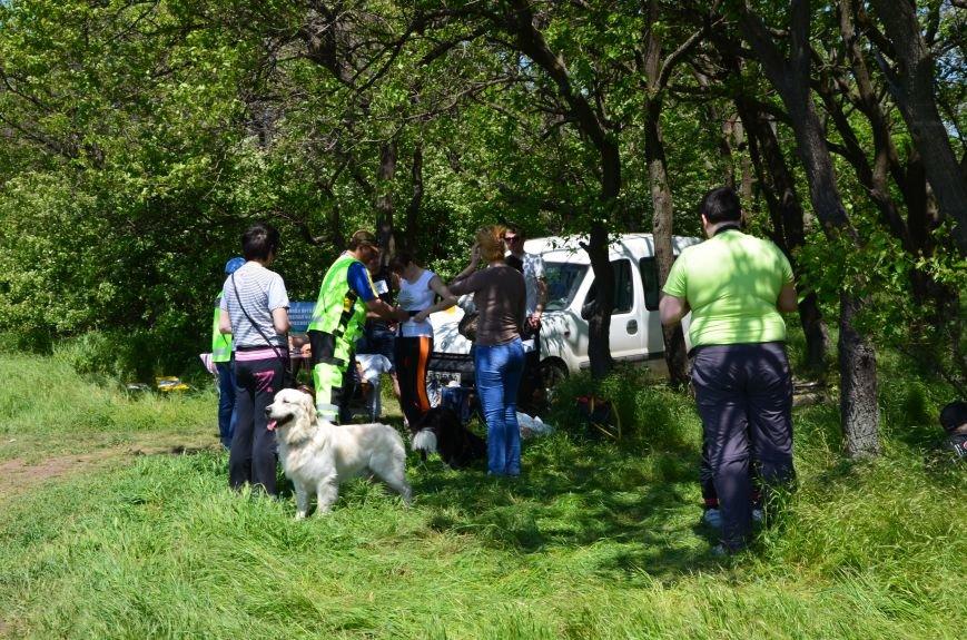 В Мариуполе владельцы собак устроили забег в Приморском парке (ФОТОРЕПОРТАЖ), фото-2