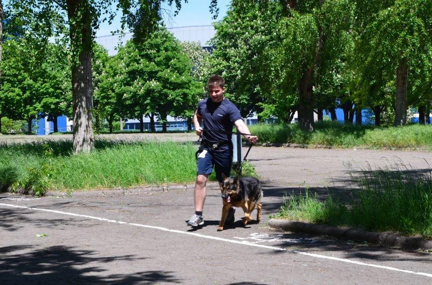 В Мариуполе владельцы собак устроили забег в Приморском парке (ФОТОРЕПОРТАЖ), фото-8