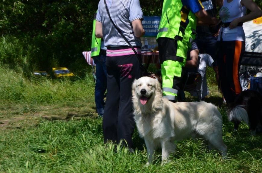 В Мариуполе владельцы собак устроили забег в Приморском парке (ФОТОРЕПОРТАЖ), фото-1