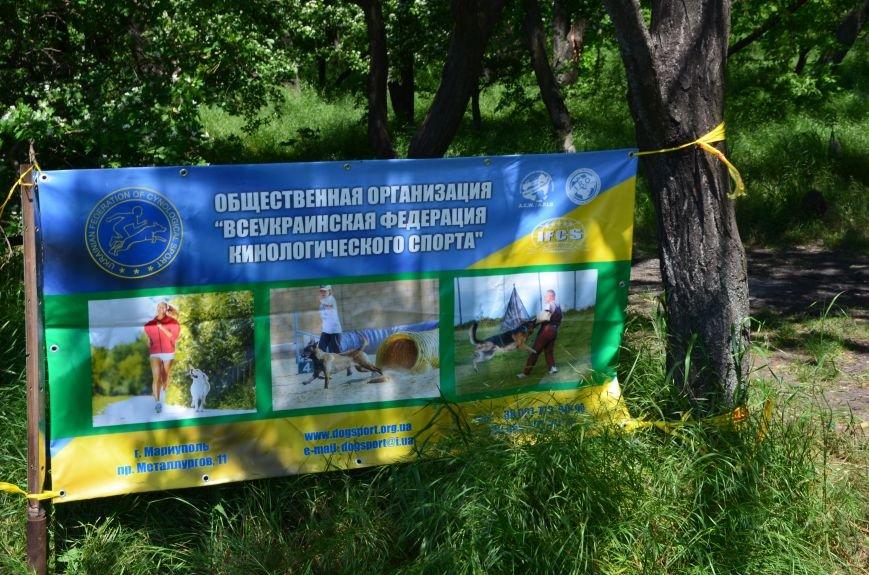 В Мариуполе владельцы собак устроили забег в Приморском парке (ФОТОРЕПОРТАЖ), фото-14