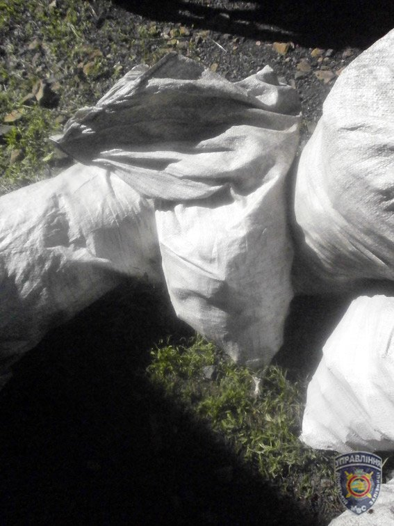Красноармейские правоохранители задержали преступную группировку, которая занималась похищением угля (фото) - фото 2