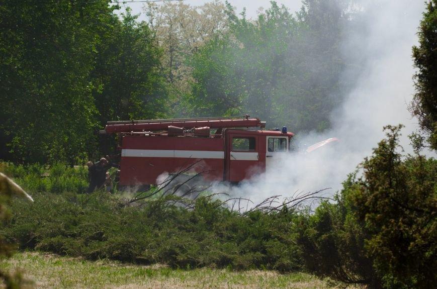 В Кривом Роге неизвестные устроили пожар возле Цветочных часов (ФОТО) (фото) - фото 1