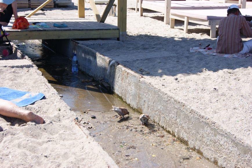 Пляжный контроль в Одессе: 16 ст. Большого Фонтана (фото) - фото 4
