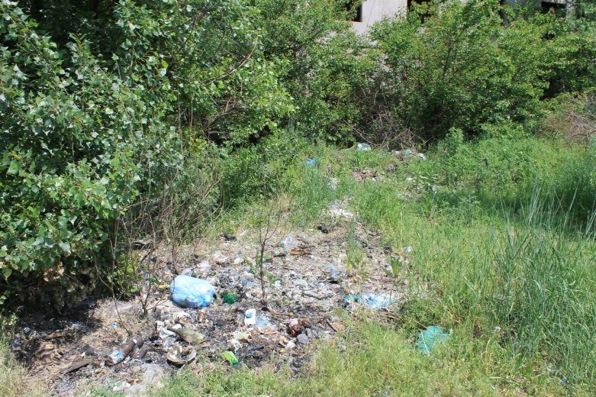 Стихийные свалки в Доброполье: ответственность местной власти или жителей города? (фото) - фото 2